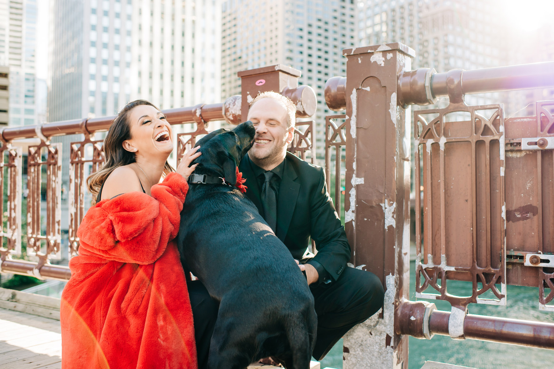 Chicago Engagement Shoot Dog